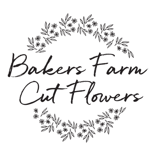 Bakers Farm Cut Flowers